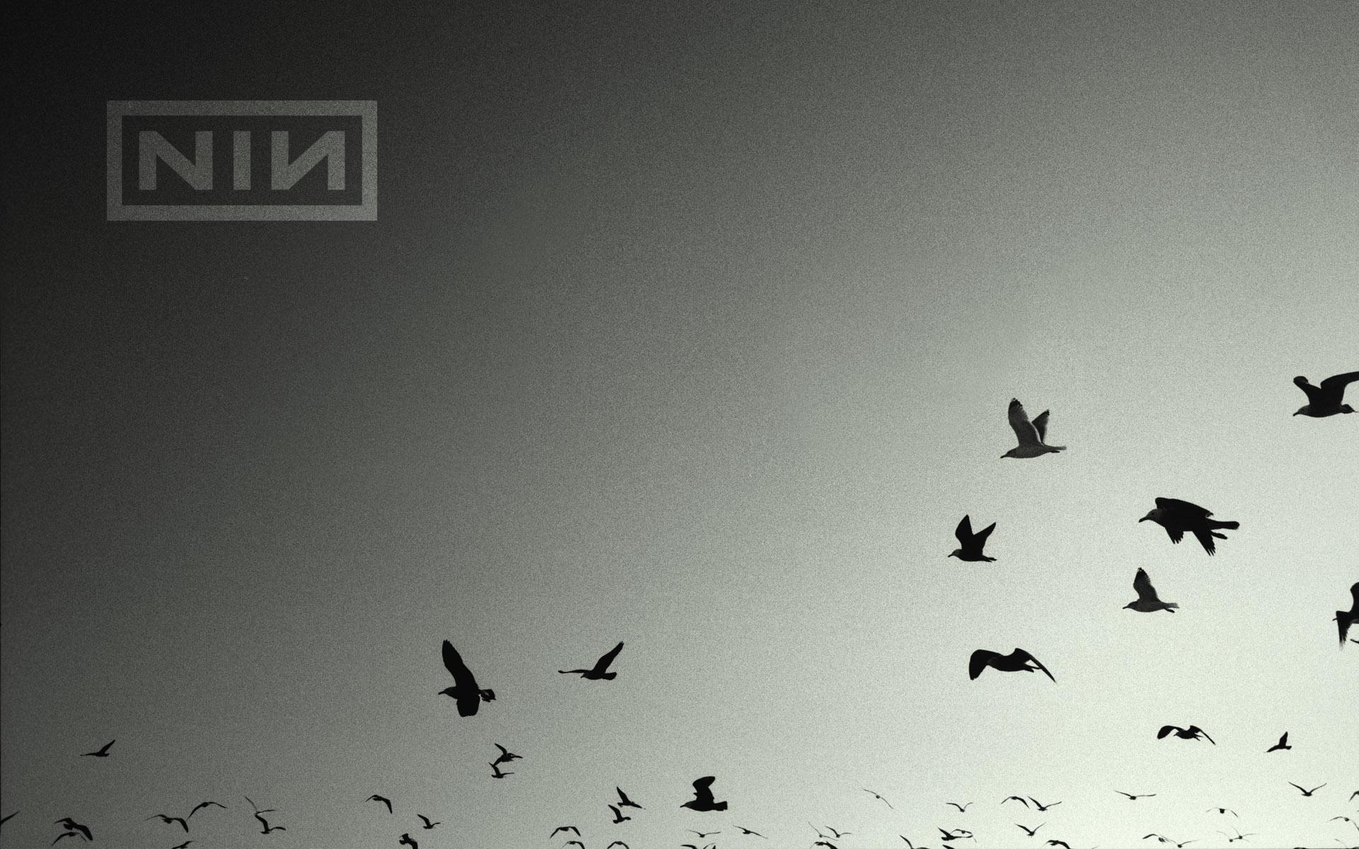 Nine Inch Nails | division / matt sparling